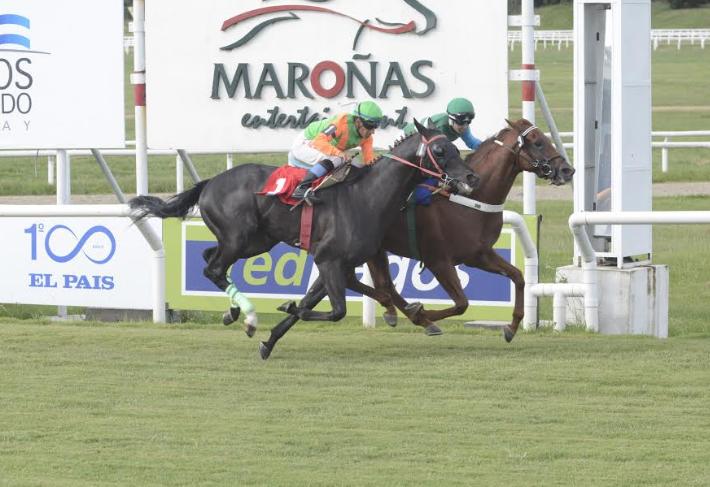 Don Carrasco ganó el Manuel Quintela (G3)
